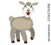 very happy sheep | Shutterstock .eps vector #1256276308
