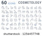 set of vector line icons of... | Shutterstock .eps vector #1256457748