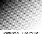 fade dots background. pop art... | Shutterstock .eps vector #1256499655