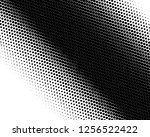 halftone background. fade... | Shutterstock .eps vector #1256522422