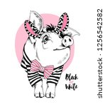 cute pig in a in a striped... | Shutterstock .eps vector #1256542582