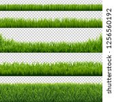green grass borders set... | Shutterstock . vector #1256560192