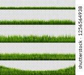 green grass transparent... | Shutterstock . vector #1256564938