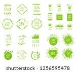 vector green grass  natural ... | Shutterstock .eps vector #1256595478