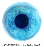 a blue eye isolated on white | Shutterstock . vector #1256604625