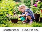 Cute Little Girl Watering...