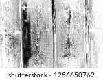 abstract background. monochrome ... | Shutterstock . vector #1256650762