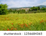 panoramic view of the village... | Shutterstock . vector #1256684365