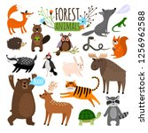 forest animals. woodland cute... | Shutterstock . vector #1256962588