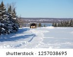 Beautiful brown and white pinto horse standing in front of other darker horse and small wooden feeding shed in rural property covered in fresh pristine snow , Saint-Antoine-de-Tilly, Quebec, Canada
