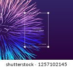 point explode. array with... | Shutterstock .eps vector #1257102145