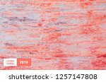 living coral color trendy... | Shutterstock . vector #1257147808