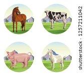 farm animals cartoons | Shutterstock .eps vector #1257211042