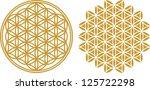 vector image   flower of life   ... | Shutterstock .eps vector #125722298