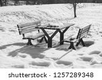 wooden seats and table at the... | Shutterstock . vector #1257289348