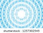 circular quilt pattern  snow... | Shutterstock .eps vector #1257302545