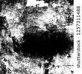 grunge background black and... | Shutterstock .eps vector #1257311488