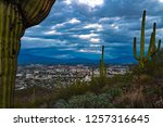 Small photo of View of Tucson, Arizona from Tumamoc Hill west of the city. Sunset, cloudy sky hues of blue and gray colors tinged by pink. Green saguaro cactus and Sonoran Desert plants. Mountains in the background.