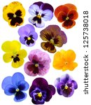 Set Of Pansies Isolated On...