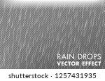 rain drops on the transparent...   Shutterstock .eps vector #1257431935