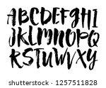 vector acrylic brush style hand ...   Shutterstock .eps vector #1257511828