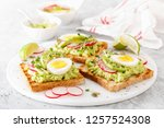toasts with avocado guacamole ... | Shutterstock . vector #1257524308