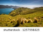 Wide angle panorama photo from French Pass in Marlborough Sounds area. Wild nature landscape panoramic shot of northern part of New Zealand. Beautiful bay and curvy road in meadow with green grass.