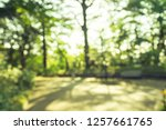 Abstract blur green field city park bokeh background - stock photo