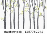 tree birch background | Shutterstock .eps vector #1257752242