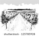 landscape with vineyard and... | Shutterstock .eps vector #125785928