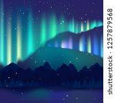 winter night landscape ... | Shutterstock .eps vector #1257879568