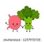 cute strong healthy happy... | Shutterstock .eps vector #1257970735