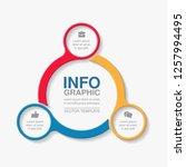 vector infographic template for ... | Shutterstock .eps vector #1257994495
