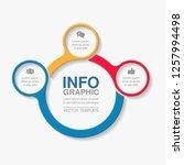 vector infographic template for ... | Shutterstock .eps vector #1257994498