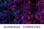 tropical palm bamboo leaves in... | Shutterstock . vector #1258041562
