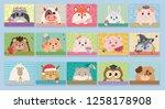 vector cartoon animals  raccoon ... | Shutterstock .eps vector #1258178908