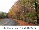 fall foliage  autumn landscape... | Shutterstock . vector #1258180555