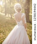beautiful bride in white dress... | Shutterstock . vector #1258194442