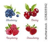 berry hand drawn vector set.... | Shutterstock .eps vector #1258205542