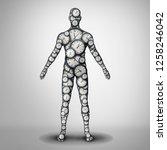Body Clock Health And Circadia...