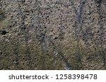 conctrete texture 5 | Shutterstock . vector #1258398478