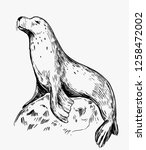 sketch of a seal on a stone.... | Shutterstock .eps vector #1258472002