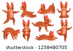 Stock vector relax yoga dog animal sport fitness training dogs doing healthy relaxing exercise and beagle 1258480705