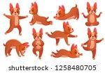 relax yoga dog. animal sport... | Shutterstock .eps vector #1258480705