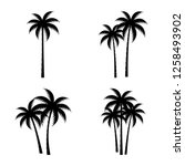 a palm tree silhouette set.   Shutterstock .eps vector #1258493902