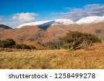 helm crag is a fell in the... | Shutterstock . vector #1258499278