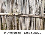 background with fence of dry... | Shutterstock . vector #1258560022