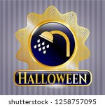 golden badge with shower icon...   Shutterstock .eps vector #1258757095