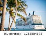 miami   june  2018  the... | Shutterstock . vector #1258804978