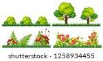set of decoration plant...   Shutterstock .eps vector #1258934455